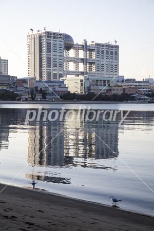 東京都港区 早朝のお台場で水面...