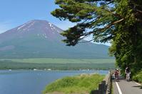 山中湖畔と富士山