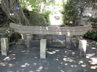 Kurokami buried torii Stock photo [3964649] Kagoshima