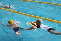 swimming Stock photo [3967989] swimming