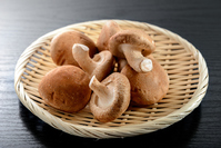 Shiitake Stock photo [3972960] Fresh