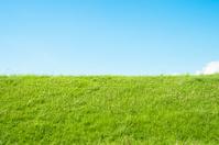 Grassland and blue sky Stock photo [4052365] Grassland