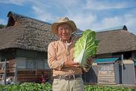 Senior smile that harvest the vegetables in the countryside living Stock photo [4118872] Senior