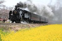 Moka railway Stock photo [4341825] Moka