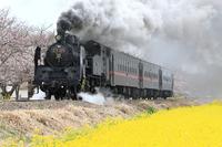 Moka railway Stock photo [4341827] Moka