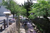 Konya River aesthetic area Stock photo [4419776] Konya