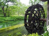Azumino of waterwheel Stock photo [4427236] Waterwheel