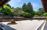 Kyoto World Heritage Temple of the Peaceful Dragon stock photo
