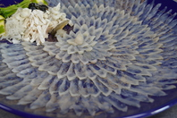 Blowfish sashimi Stock photo [4503954] Fugu