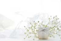 Gift boxes and gypsophila Stock photo [4644315] Present