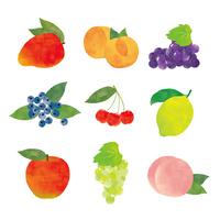 Fruit illustrations set [4649405] mango