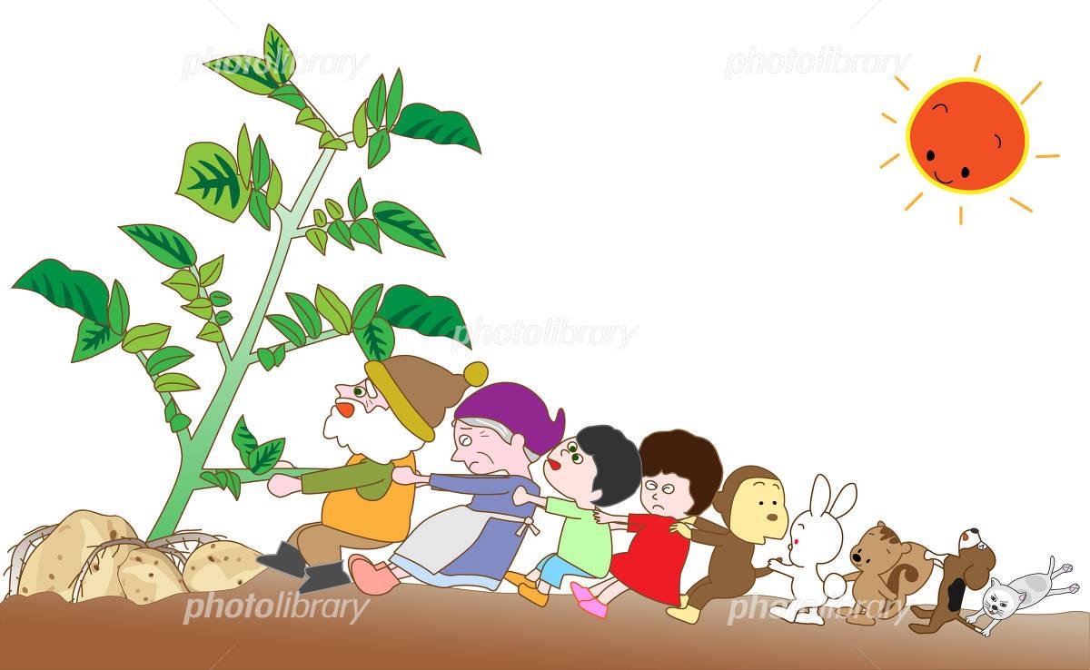 ジャガイモの収穫 イラスト素材 フォトライブラリー Photolibrary