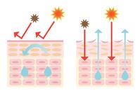 Dry skin and moisturizing skin [4719380] skin