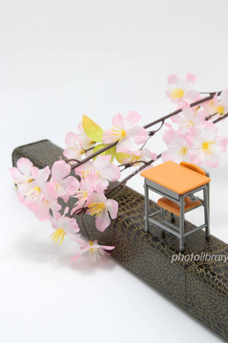 卒業証書ケース 机 桜 写真素材 4895822 フォトライブラリー