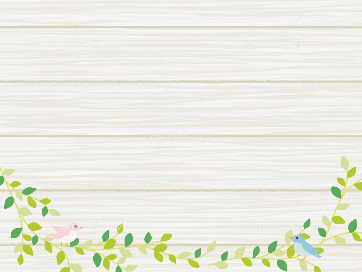 植物と小鳥のナチュラルな背景素材 イラスト素材 4906115 フォト