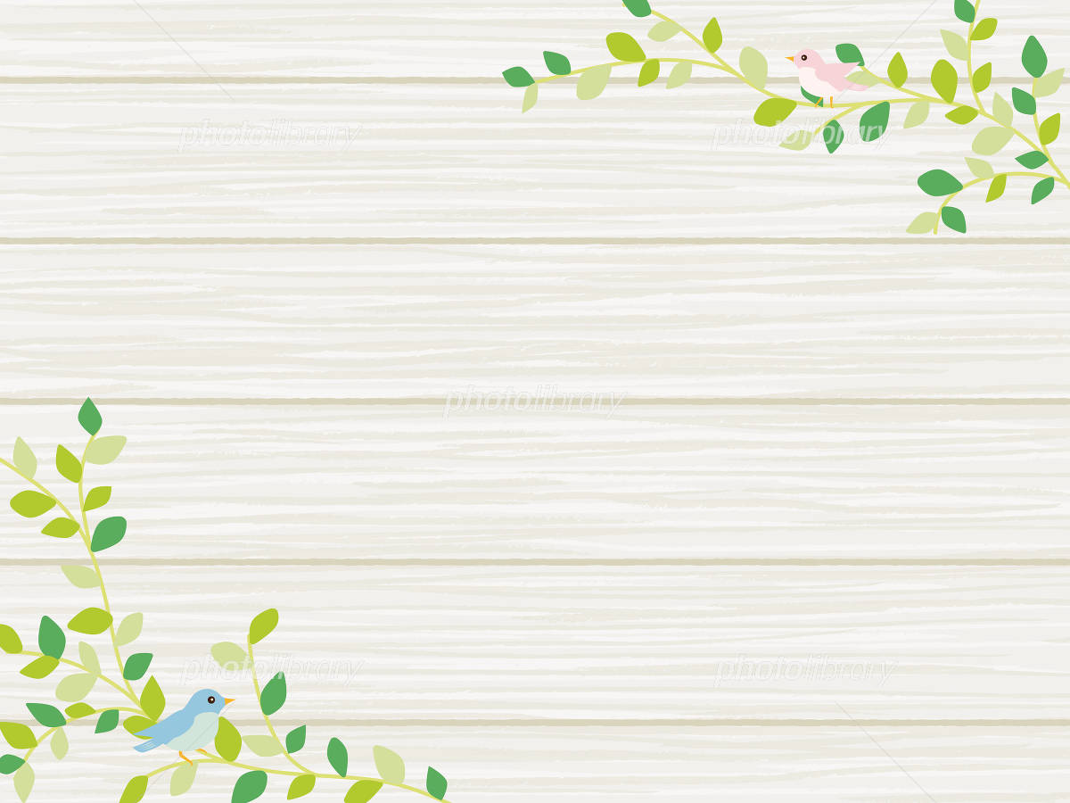 植物と小鳥のナチュラルな背景素材 イラスト素材 4906126 フォト