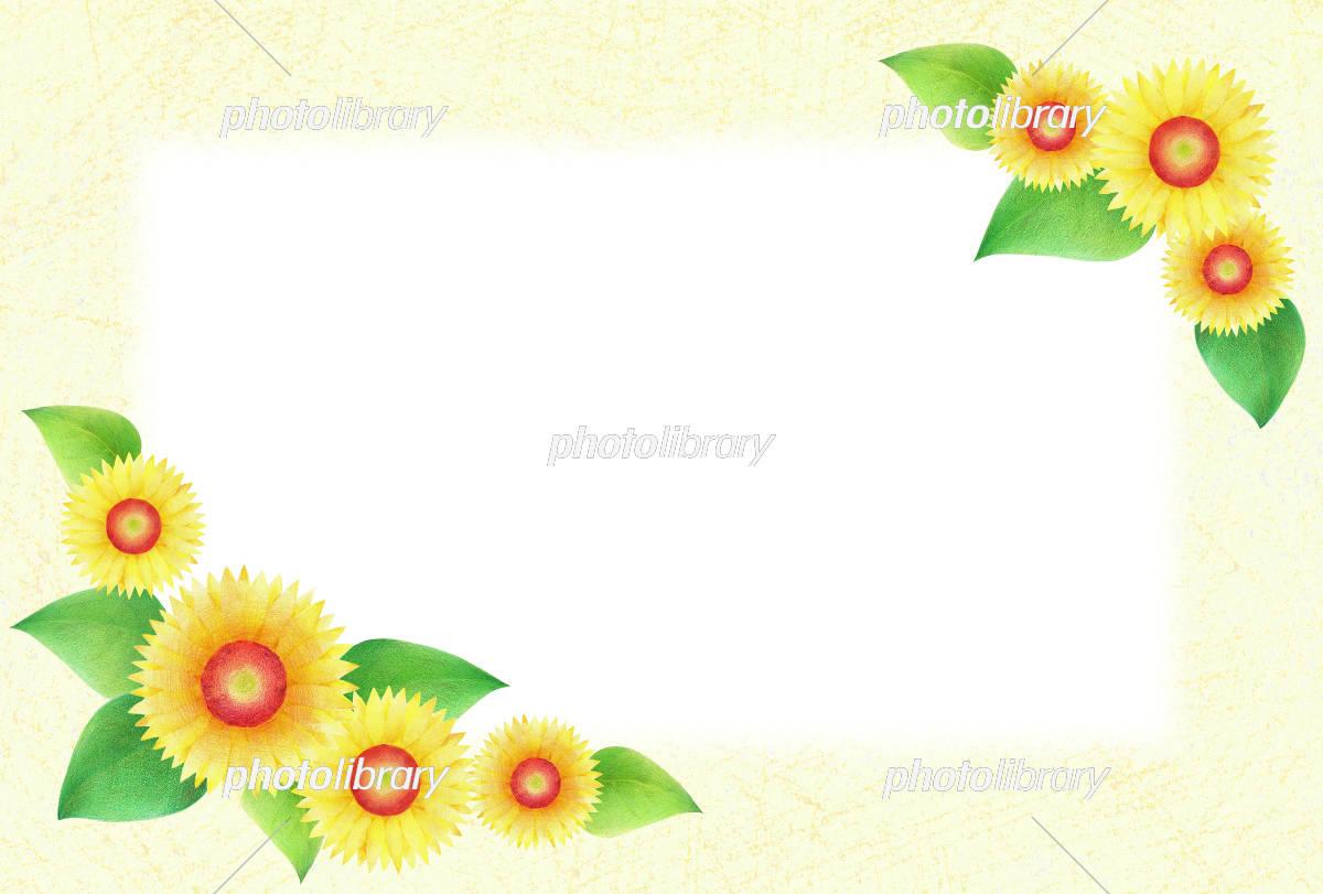 ひまわり フレーム 横 イラスト素材 [ 5091591 ] - フォトライブラリー