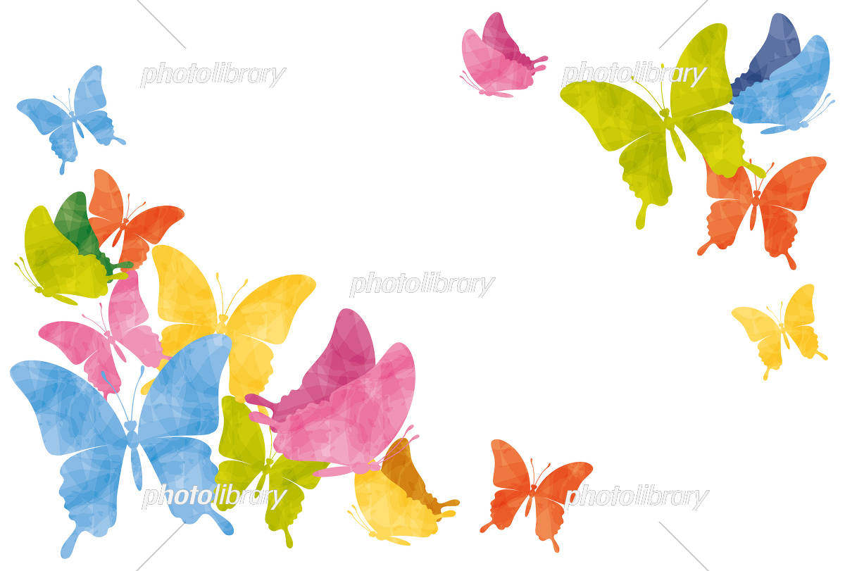 カラフルな蝶のフレーム イラスト素材 [ 5093661 ] 無料素材- フォト