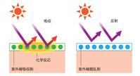 Ultraviolet absorber Ultraviolet light confusion agent [5093744] Sunscreen
