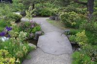 庭園 善光寺
