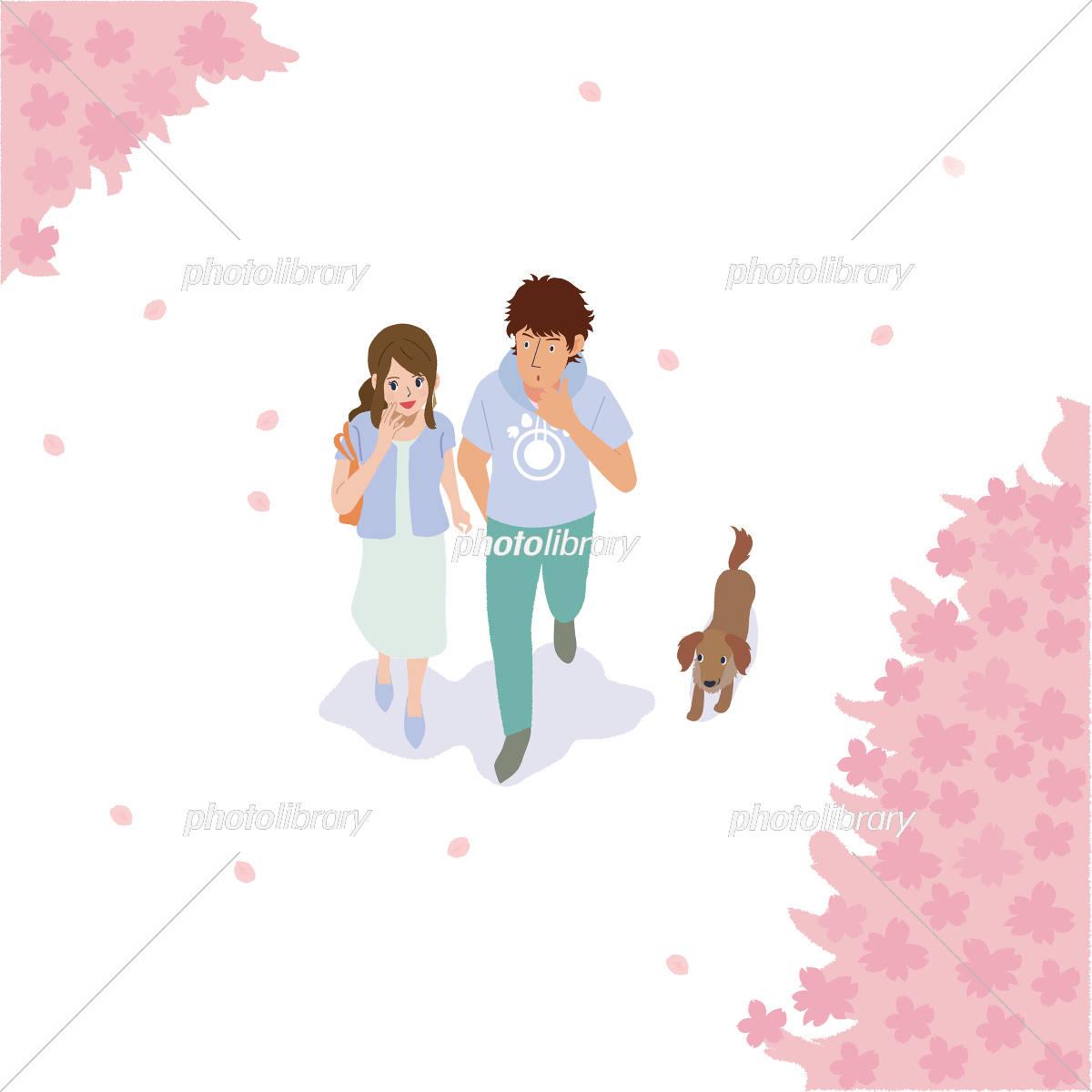 お花見 カップル イラスト イラスト素材 [ 5191087 ] - フォトライブ