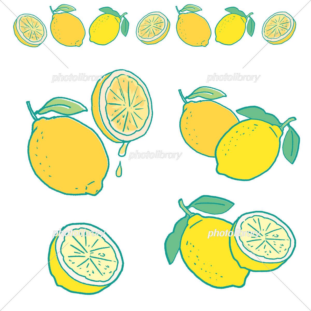 レモン イラスト イラスト素材 5191108 フォトライブラリー