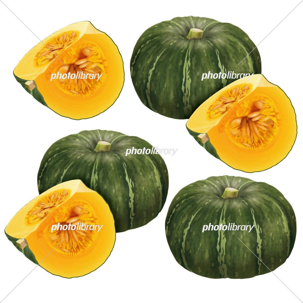 かぼちゃ イラスト素材 5430445 フォトライブラリー
