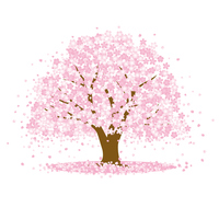 桜の木の写真素材 人気順 フォトライブラリー Photolibrary