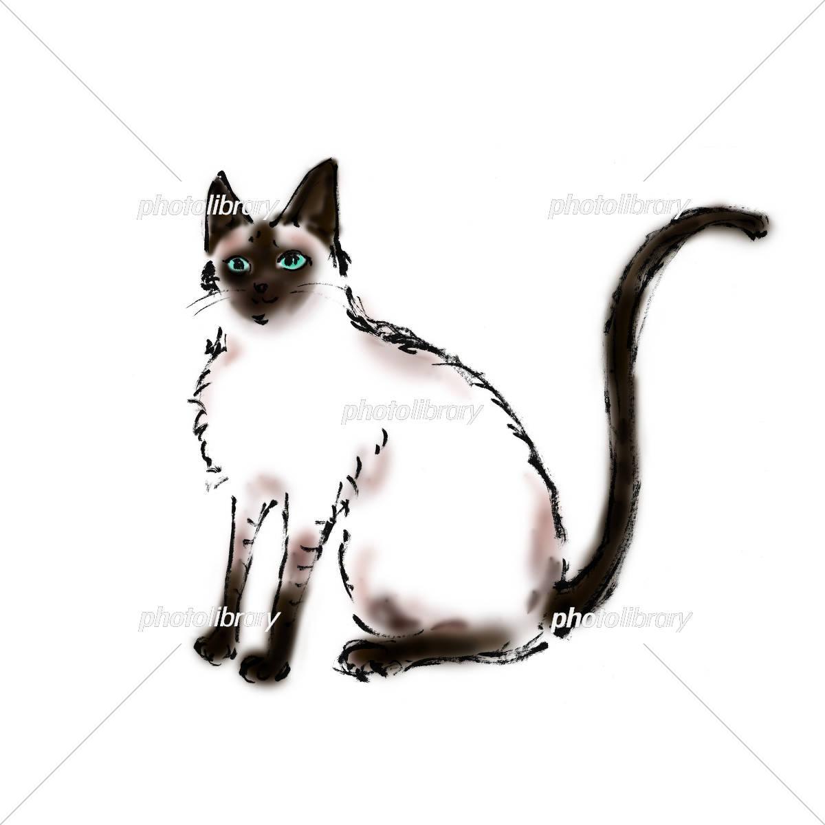 シャム猫 イラスト素材 5464293 フォトライブラリー Photolibrary