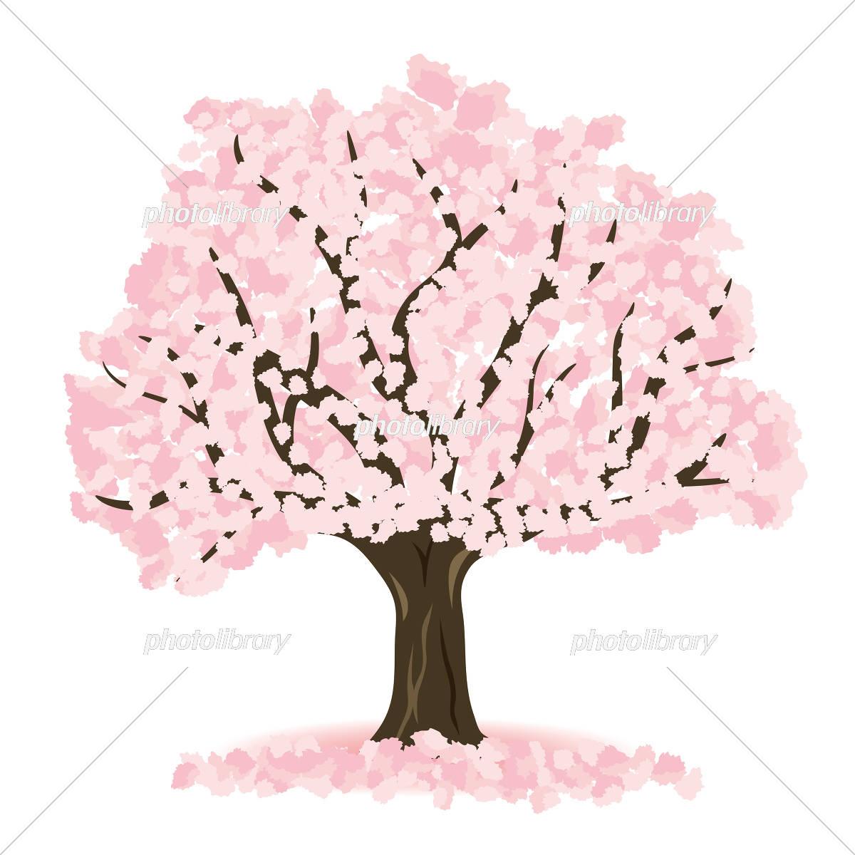 桜の木 イラスト素材 イラスト素材 5465042 フォトライブラリー