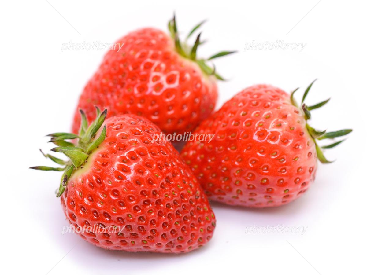 Yotsuboshi strawberry Photo