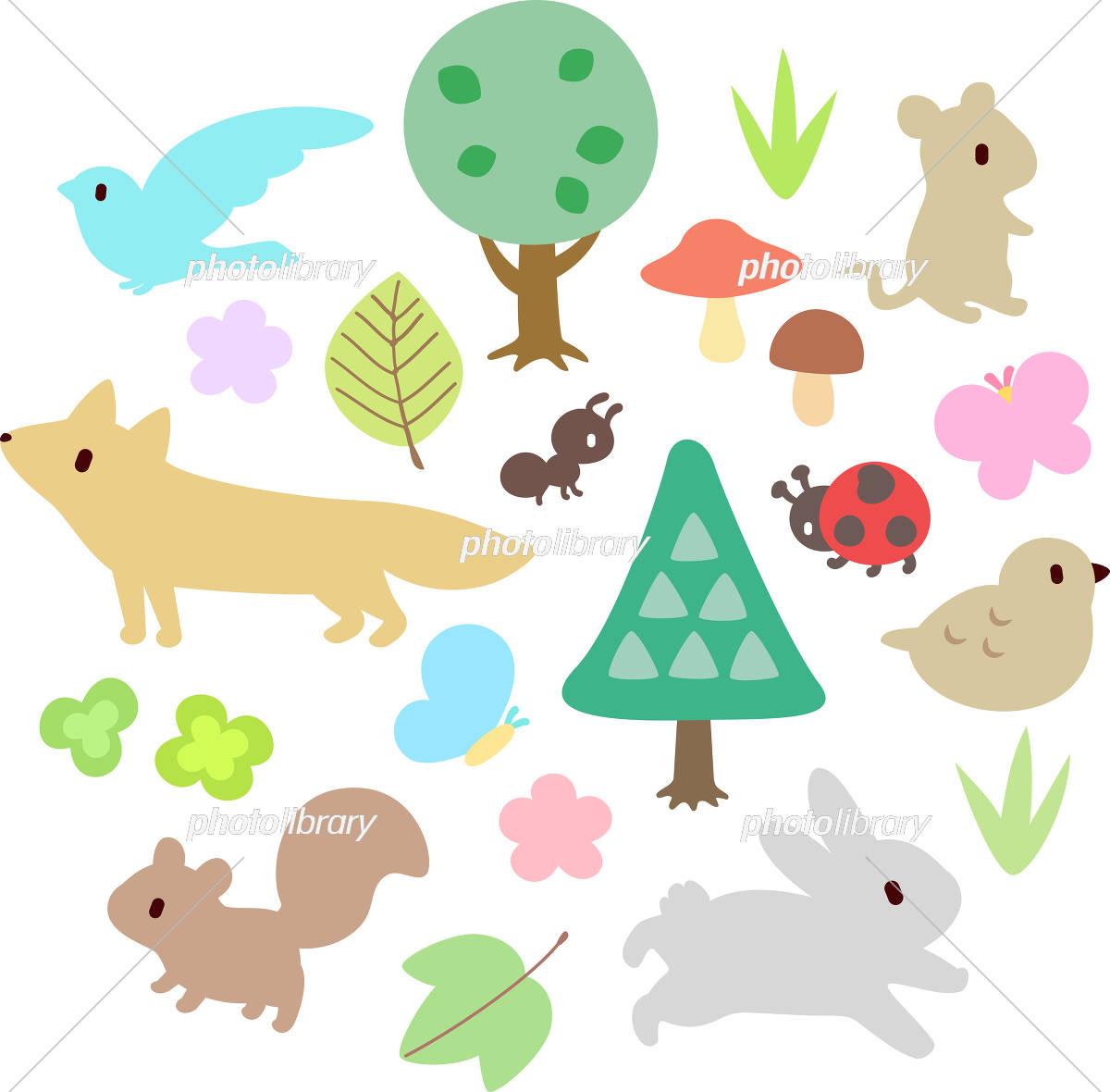 森の動物と植物 イラスト素材 [ 5499003 ] - フォトライブラリー