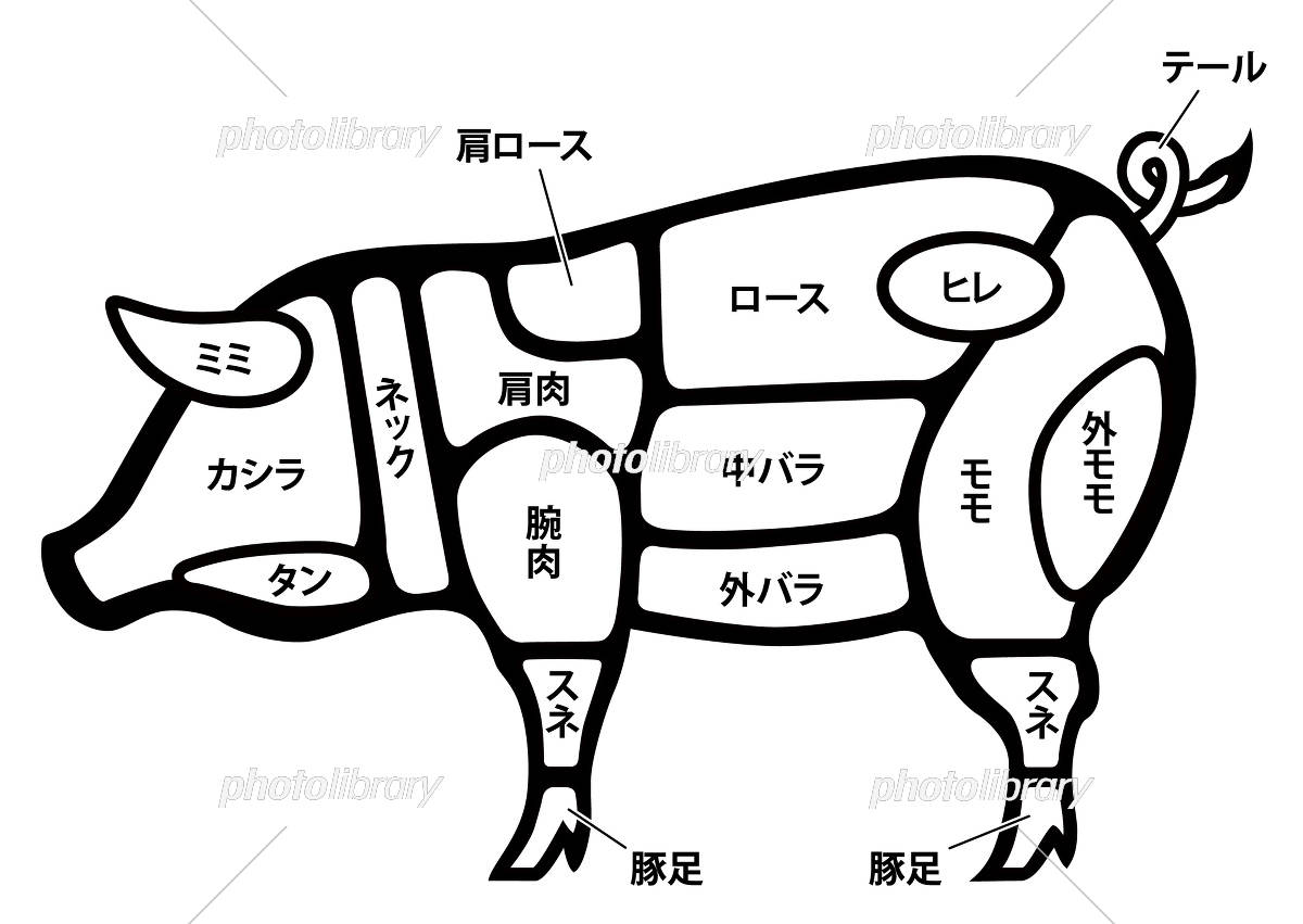 豚足 イラスト
