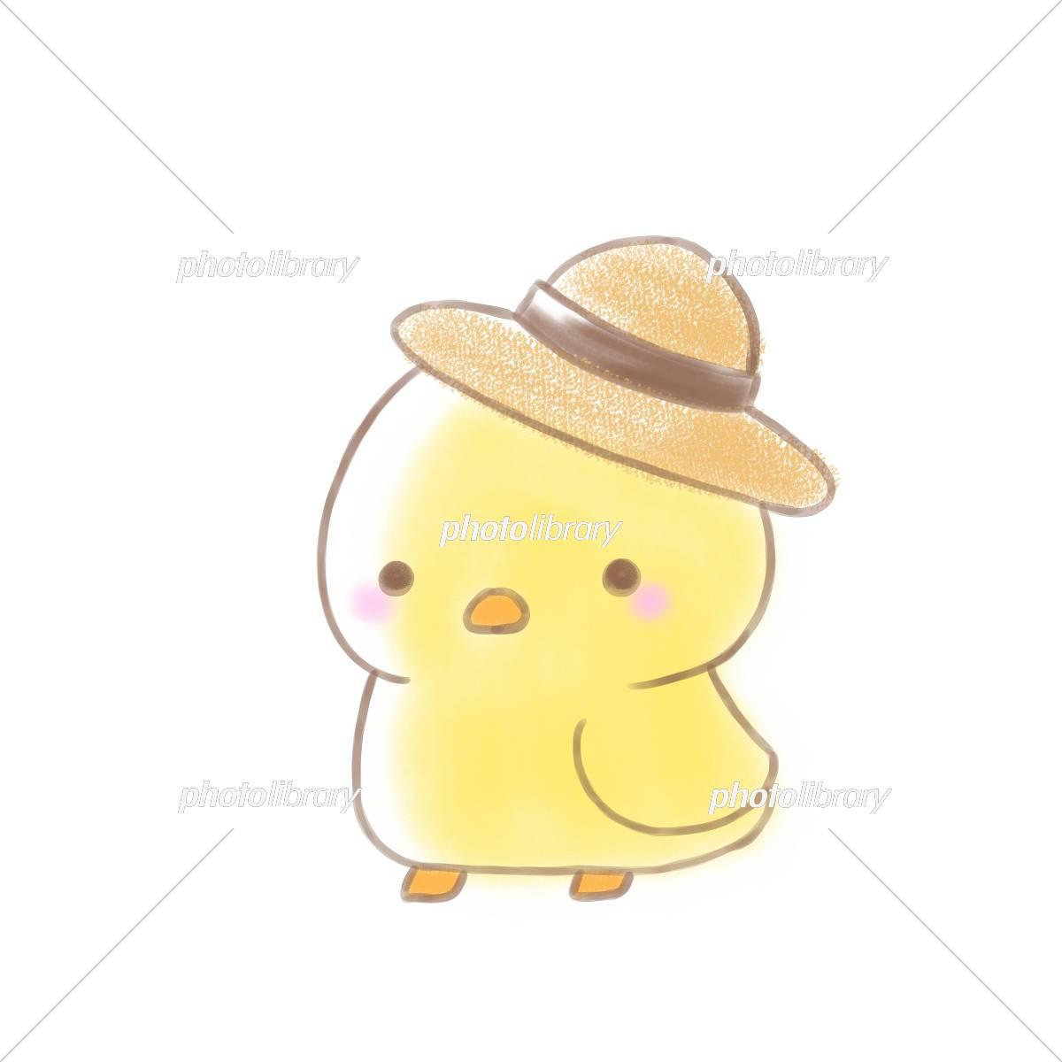 麦わら帽子 ひよこ イラスト素材 5568428 フォトライブラリー