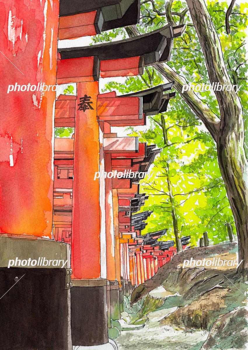 水彩画伏見稲荷大社 イラスト素材 5603913 フォトライブラリー