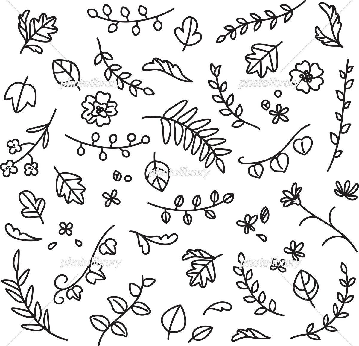 植物 葉 花の手描きイラスト イラスト素材 フォトライブラリー Photolibrary