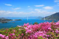 しまなみ海道開山展望台からの瀬戸内海