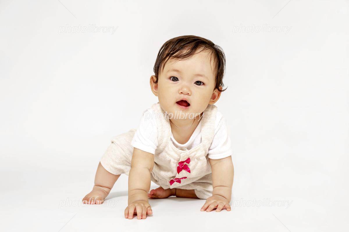 ハイハイしながらカメラ目線の女の子の赤ちゃん 正面 写真素材 フォトライブラリー Photolibrary