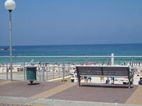 Beach and bench Stock photo [248126] Australia