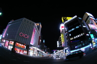 Koriyama Station Stock photo [252393] Night