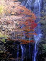 Shirataki autumn leaves Stock photo [626029] Miyazaki
