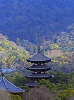 Kofukuji five-story pagoda Stock photo [708808] Kofukuji