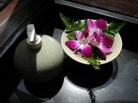 Denfare and soap Stock photo [716718] Thailand
