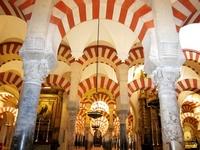 Forest Mezquita cylinder Stock photo [789807] Cordoba