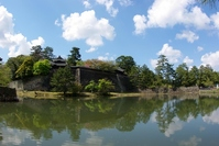 Fresh green of Matsue Castle Stock photo [793190] Pine