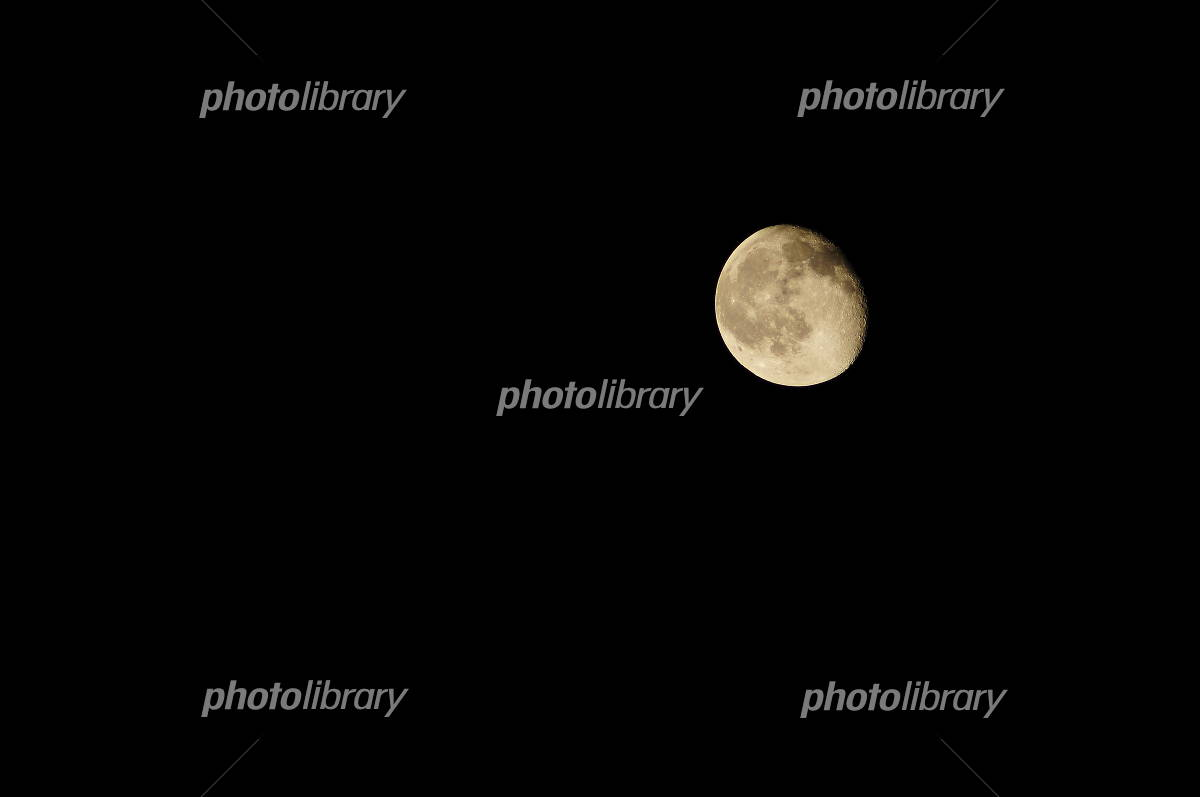 闇夜の月の写真