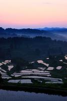 Dawn of rice terraces Stock photo [878115] Niigata
