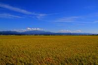 Shonai Plain Gassan Stock photo [951743] Yamagata