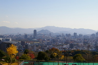 Hiroshima city as seen from the Dragon King Park Stock photo [952401] Hiroshima