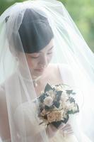 Bride wedding dresses Stock photo [952939] Bride